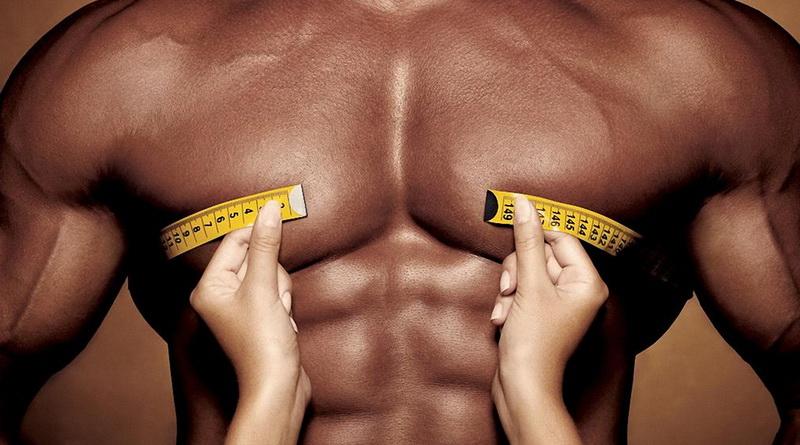 мускулы