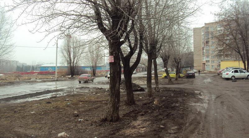 проспект Калашникова фото